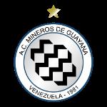 mineros-de-guayana
