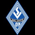 waldhof-mannheim