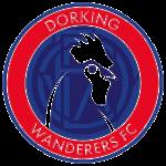 dorking-wanderers