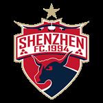 shenzhen-ruby