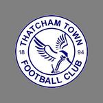 thatcham-town