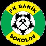 banik-sokolov