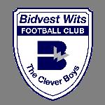 bidvest-wits