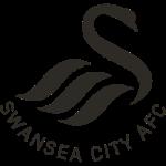 swansea-city